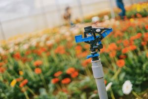 Programmatori-per-irrigazione